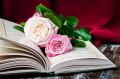 ادعاء خطأ القرآن في ذكر قصة وفاة سليمان عليه السلام